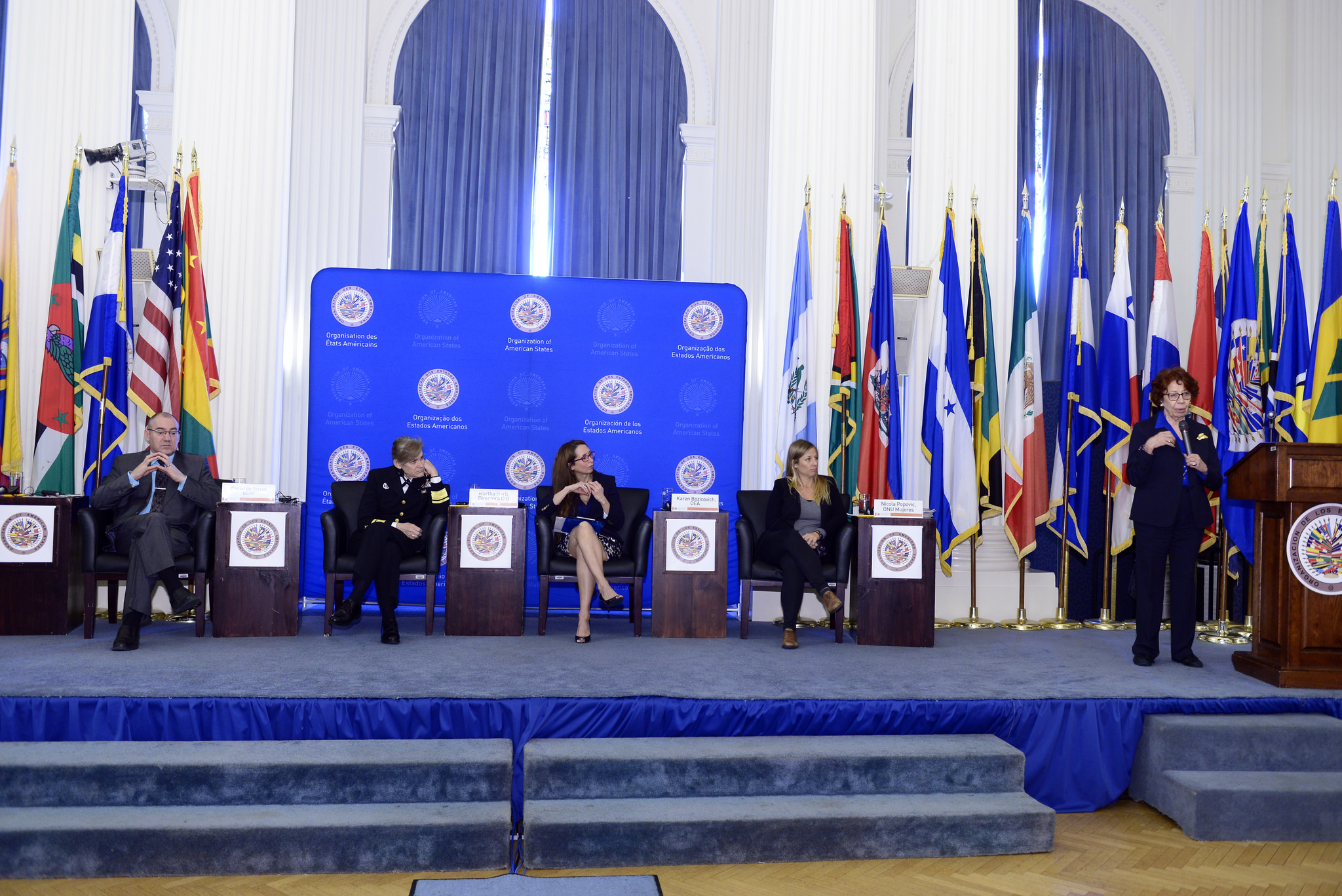 panel meeting at OAS