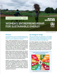 Women's entrepreneurship for sustainable energy