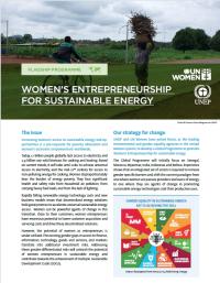 Women's entrepreneurship for sustainable energy